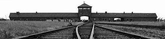 Giorno della memoria: l'olocausto dei disabili