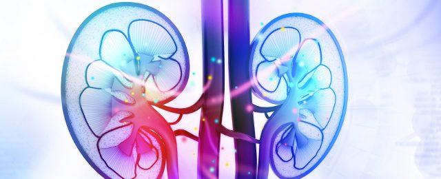 Medicina personalizzata, diagnosi delle malattie renali nei bambini